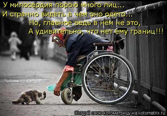 Котоматрица: У милосердия порою много лиц... И странно видеть в чем оно одето... Но, главное ведь в нём не это, А удивительно, что нет ему границ!!!