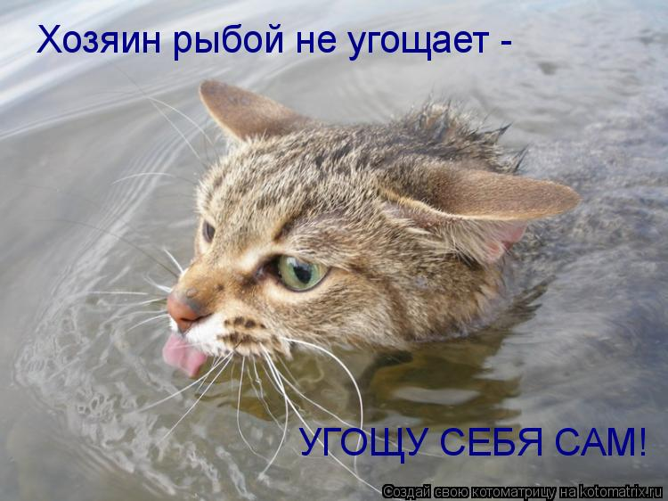 Котоматрица: Хозяин рыбой не угощает -  УГОЩУ СЕБЯ САМ!