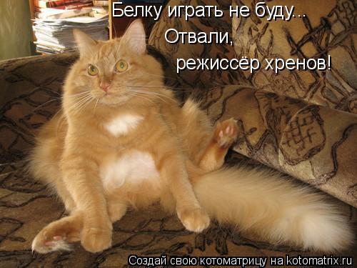 Котоматрица: Белку играть не буду... Отвали, режиссёр хренов!