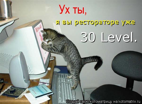 Котоматрица: Ух ты, я вы рестораторе уже 30 Level.