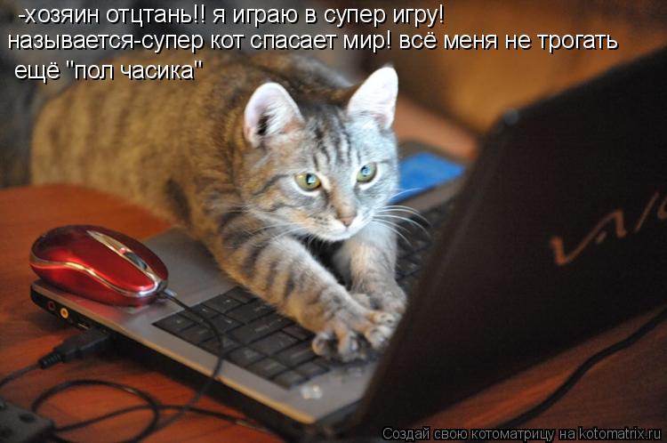 """Котоматрица: -хозяин отцтань!! я играю в супер игру! называется-супер кот спасает мир! всё меня не трогать   ещё """"пол часика"""""""