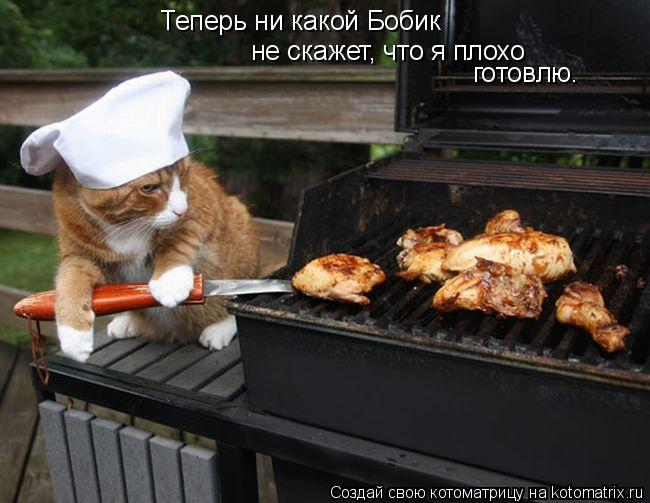 Котоматрица: Теперь ни какой Бобик не скажет, что я плохо готовлю.