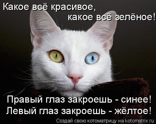 http://kotomatrix.ru/images/lolz/2009/10/08/373156.jpg