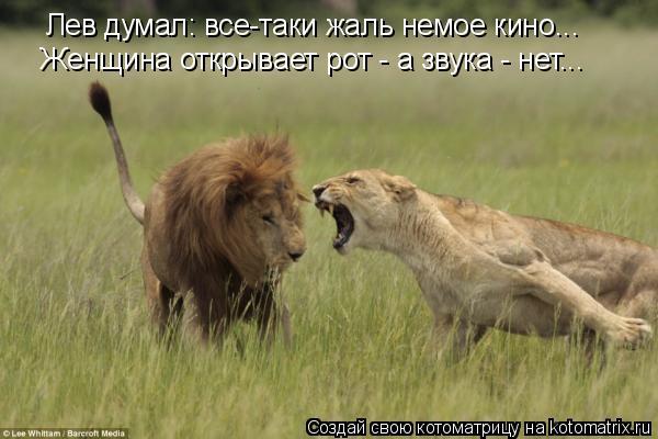 Котоматрица: Лев думал: все-таки жаль немое кино... Женщина открывает рот - а звука - нет...