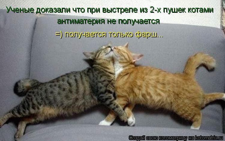 Котоматрица: Ученые доказали что при выстреле из 2-х пушек котами  антиматерия не получается  =) получается только фарш...