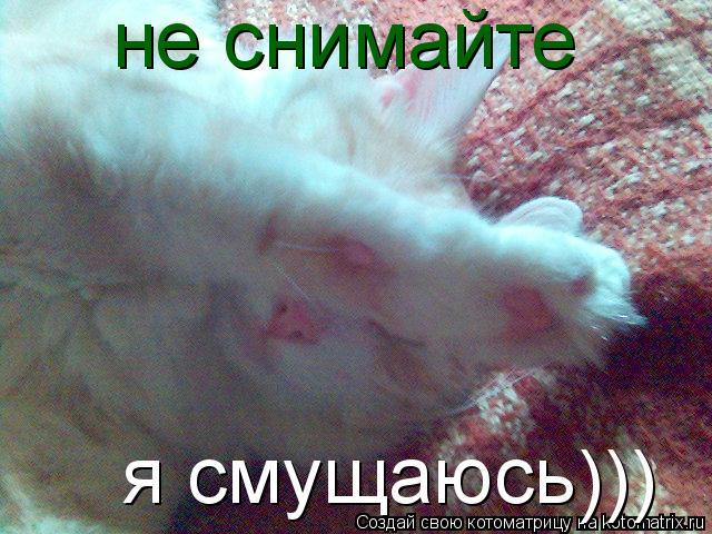 Котоматрица: не снимайте я смущаюсь )))