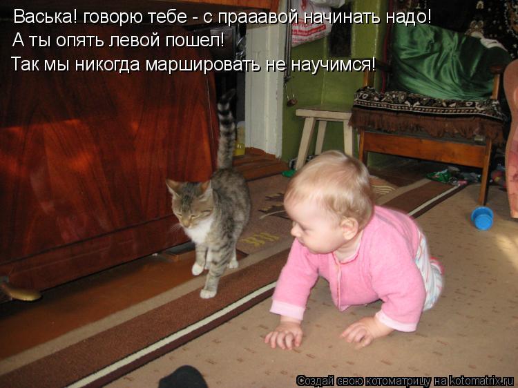 Котоматрица: Васька! говорю тебе - с прааавой начинать надо! А ты опять левой пошел! Так мы никогда маршировать не научимся!