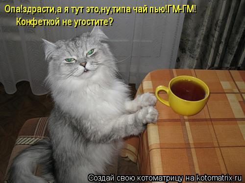 Котоматрица: Опа!здрасти,а я тут это,ну,типа чай пью!ГМ-ГМ! Конфеткой не угостите?
