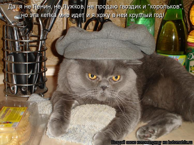 """Котоматрица: Да, я не Ленин, не Лужков, не продаю гвоздик и """"корольков"""",  но эта кепка мне идет и я хожу в ней круглый год!"""