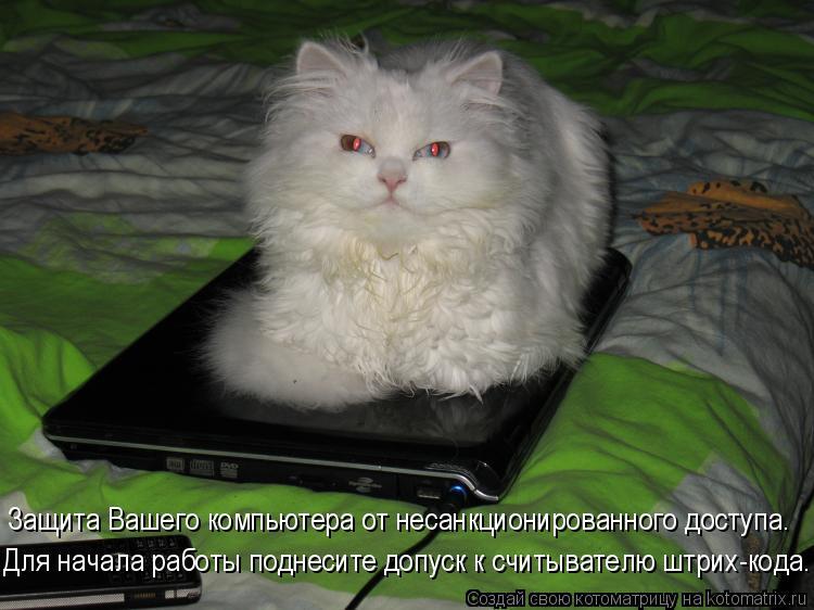 Котоматрица: Защита Вашего компьютера от несанкционированного доступа. Для начала работы поднесите допуск к считывателю штрих-кода.
