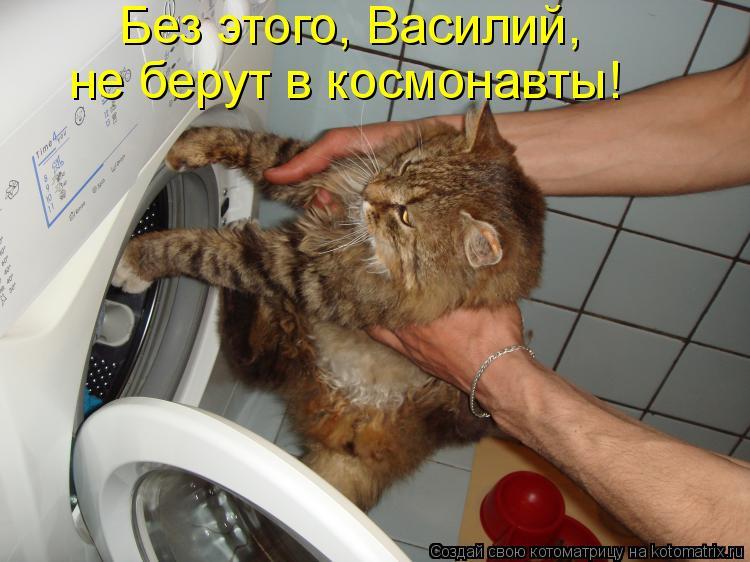 Котоматрица: Без этого, Василий, не берут в космонавты!