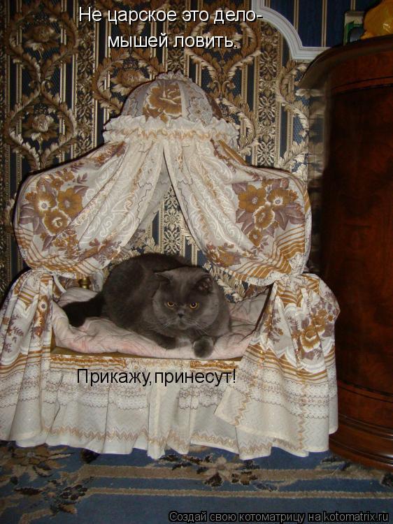 Котоматрица: Не царское это дело- мышей ловить. Прикажу,принесут!