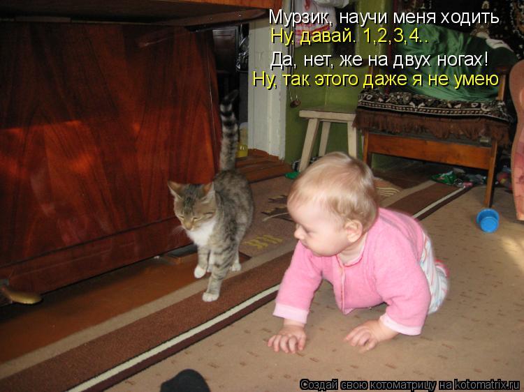 Котоматрица: Мурзик, научи меня ходить Да, нет, же на двух ногах! Ну, давай. 1,2,3,4.. Ну, так этого даже я не умею