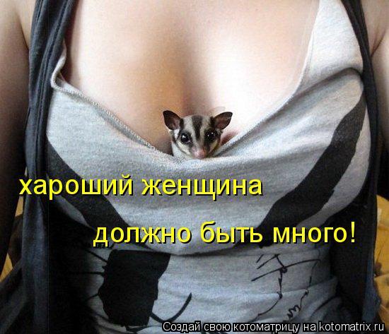 Котоматрица: хароший женщина  должно быть много!