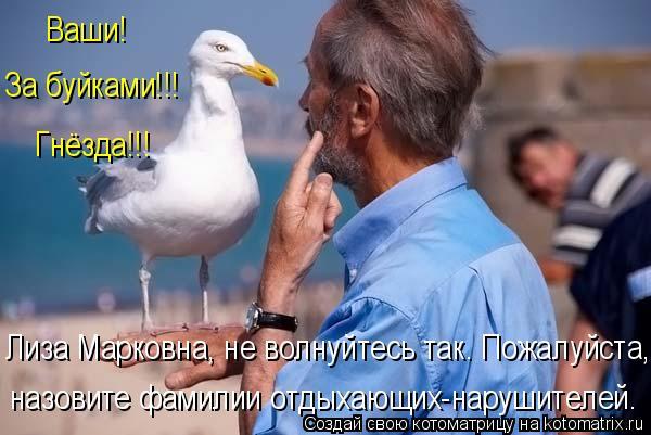 Котоматрица: Ваши! За буйками!!! Гнëзда!!! Лиза Марковна, не волнуйтесь так. Пожалуйста, назовите фамилии отдыхающих-нарушителей.