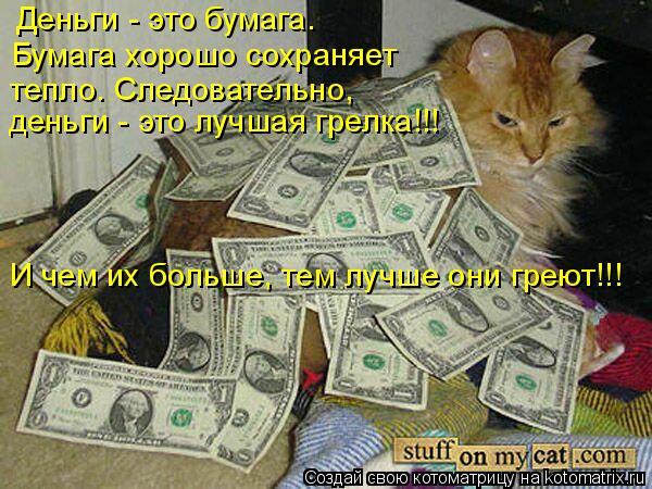 Котоматрица: Деньги - это бумага. Бумага хорошо сохраняет  тепло. Следовательно, деньги - это лучшая грелка!!! И чем их больше, тем лучше они греют!!!