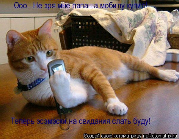 Котоматрица: Ооо...Не зря мне папаша мобилу купил! Теперь эсэмэски на свидания слать буду!