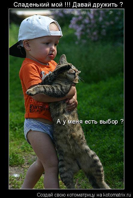 Котоматрица: Сладенький мой !!! Давай дружить ? А у меня есть выбор ?