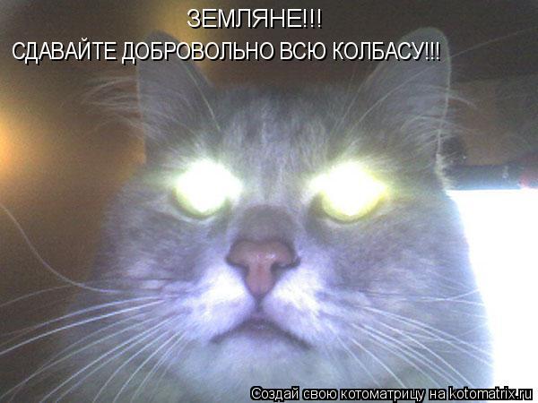 Котоматрица: ЗЕМЛЯНЕ!!! СДАВАЙТЕ ДОБРОВОЛЬНО ВСЮ КОЛБАСУ!!!