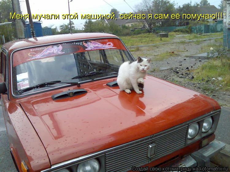 Котоматрица: Меня мучали этой машиной, сейчас я сам её помучаю!!!