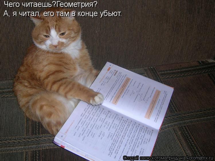 Котоматрица: Чего читаешь?Геометрия? А, я читал, его там в конце убьют.