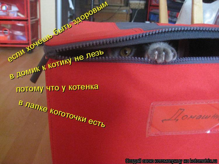 Котоматрица: в домик к котику не лезь потому что у котенка в лапке коготочки есть если хочешь быть здоровым