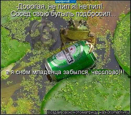 Котоматрица: -Дорогая, не пил я! не пил! Сосед свою бутыль подбросил... а я сном младенца забылся, чесслово!!!