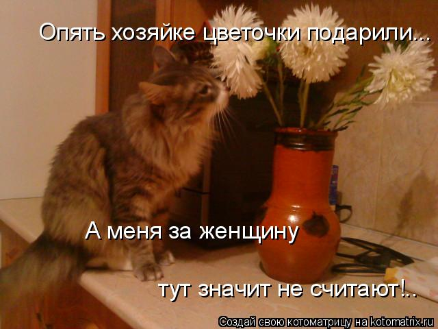 Котоматрица: Опять хозяйке цветочки подарили... А меня за женщину тут значит не считают!..