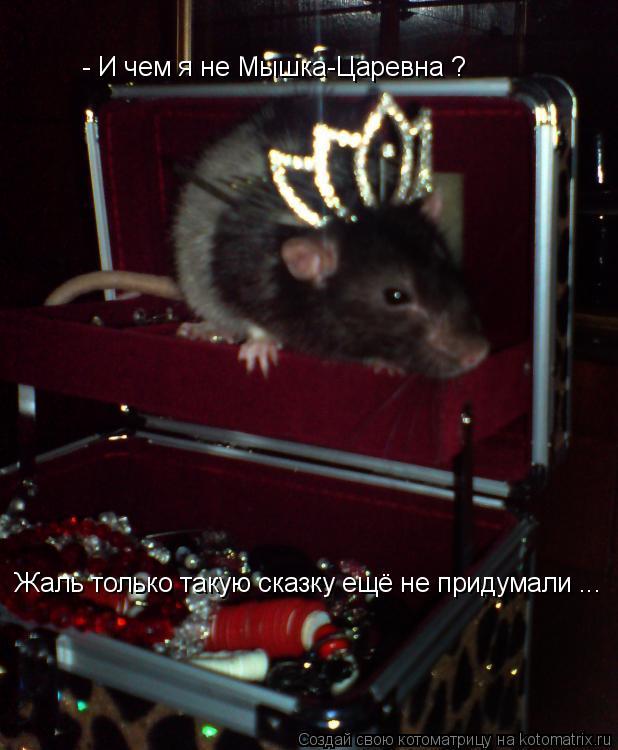 Котоматрица: - И чем я не Мышка-Царевна ?  Жаль только такую сказку ещё не придумали ...
