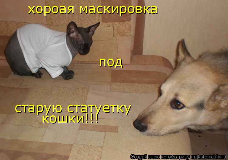 Котоматрица: хороая маскировка  под  старую статуетку кошки!!!