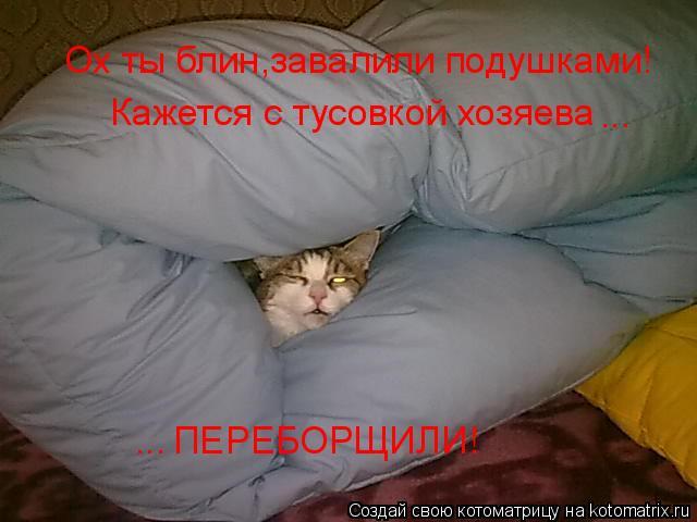 Котоматрица: Ох ты блин,завалили подушками! Кажется с тусовкой хозяева  ... ... ПЕРЕБОРЩИЛИ!