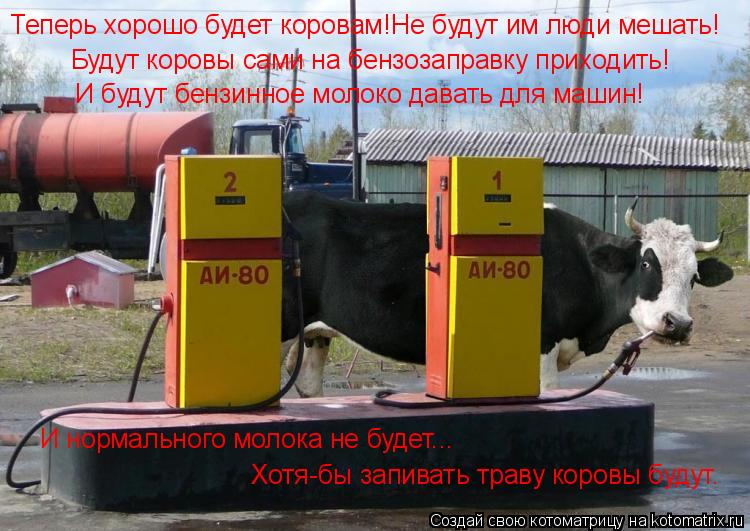 Котоматрица: Теперь хорошо будет коровам!Не будут им люди мешать! Будут коровы сами на бензозаправку приходить! И будут бензинное молоко давать для маши