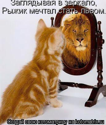 Котоматрица: Заглядывая в зеркало, Рыжик мечтал стать львом...