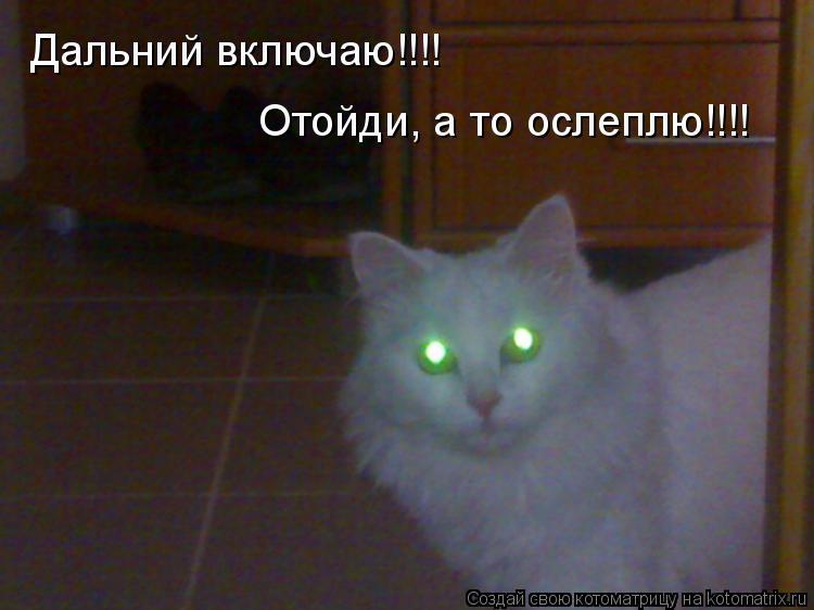 Котоматрица: Дальний включаю!!!! Отойди, а то ослеплю!!!!