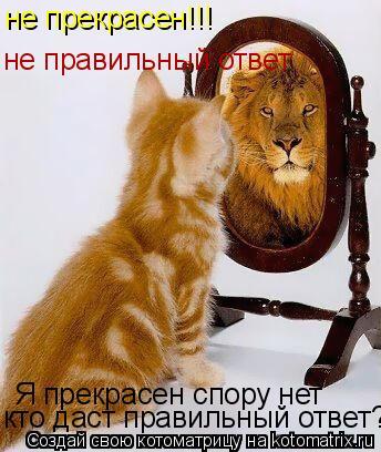Котоматрица: Я прекрасен спору нет кто даст правильный ответ? не прекрасен!!! не правильный ответ
