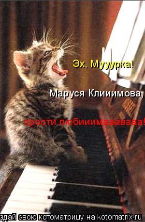 Котоматрица: Эх, Мууурка!  Маруся Клииимова, прости любииимааавааа!