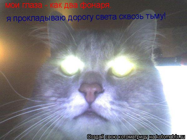 Котоматрица: мои глаза - как два фонаря. я прокладываю дорогу света сквозь тьму!