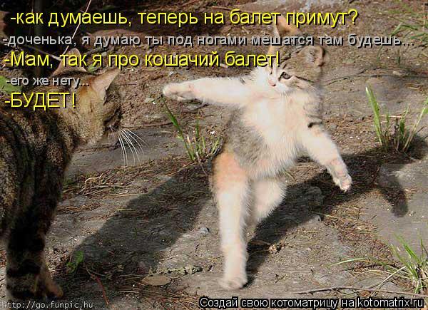 Котоматрица: -как думаешь, теперь на балет примут? -доченька, я думаю ты под ногами мешатся там будешь... -Мам, так я про кошачий балет! -его же нету... -БУДЕТ!