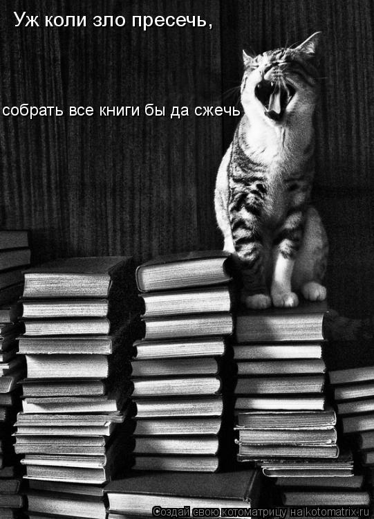 Котоматрица: собрать все книги бы да сжечь Уж коли зло пресечь,