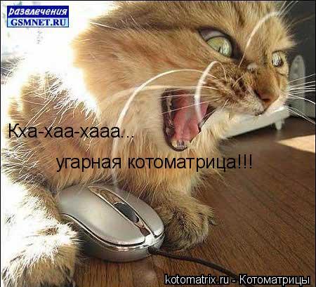 Котоматрица: Кха-хаа-хааа...  угарная котоматрица!!!