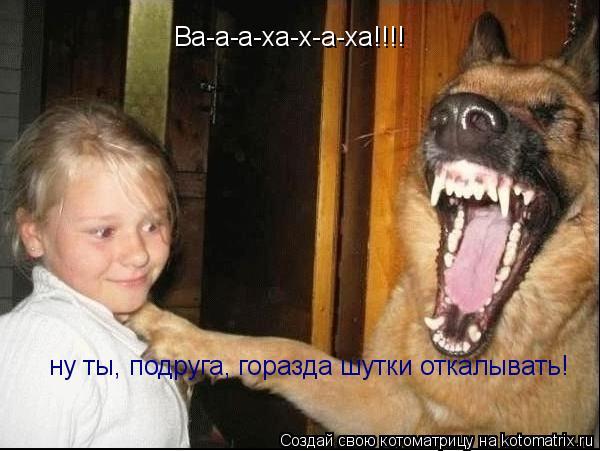 Котоматрица: Ва-а-а-ха-х-а-ха!!!! ну ты, подруга, горазда шутки откалывать!