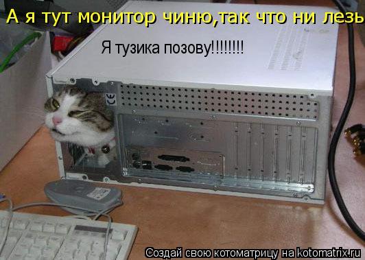 Котоматрица: А я тут монитор чиню,так что ни лезь!!!!! Я тузика позову!!!!!!!!