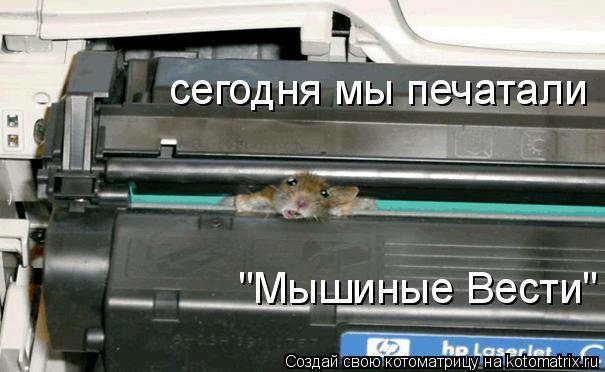 """Котоматрица: сегодня мы печатали """"Мышиные Вести"""""""