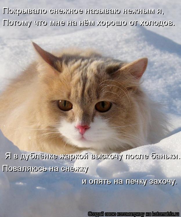 Котоматрица: Покрывало снежное называю нежным я, Потому что мне на нём хорошо от холодов. Я в дублёнке жаркой выскочу после баньки. Поваляюсь на снежку