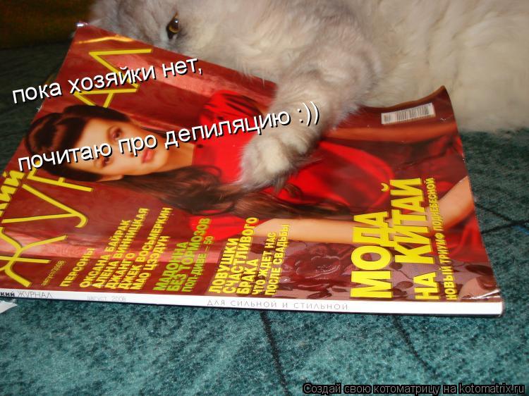 Котоматрица: пока хозяйки нет, почитаю про депиляцию :)) пока хозяйки нет, почитаю про депиляцию :))