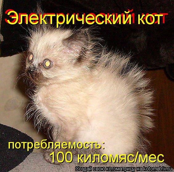 Котоматрица: Электрический кот Электрический кот 100 киломяс/мес потребляемость: