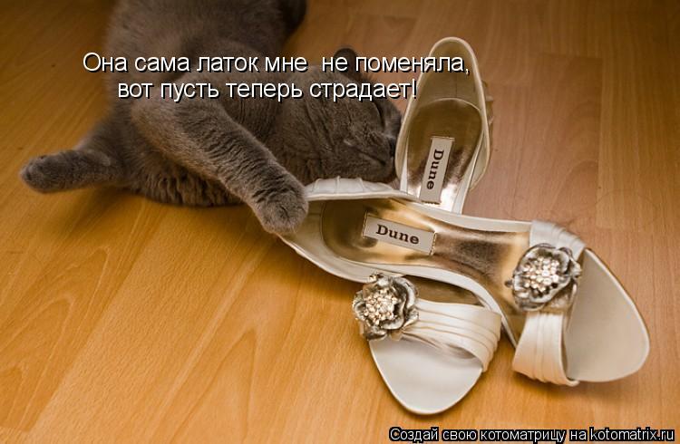 Котоматрица: Она сама латок мне  не поменяла, вот пусть теперь страдает!