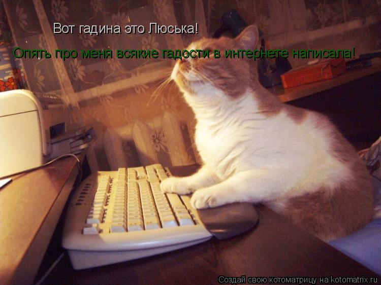 Котоматрица: Вот гадина это Люська! Опять про меня всякие гадости в интернете написала!