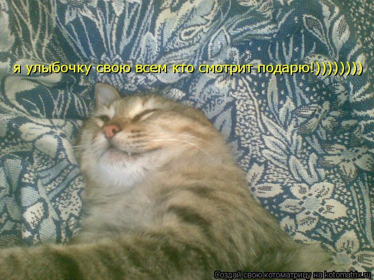 Котоматрица: я улыбочку свою всем кто смотрит подарю!))))))))