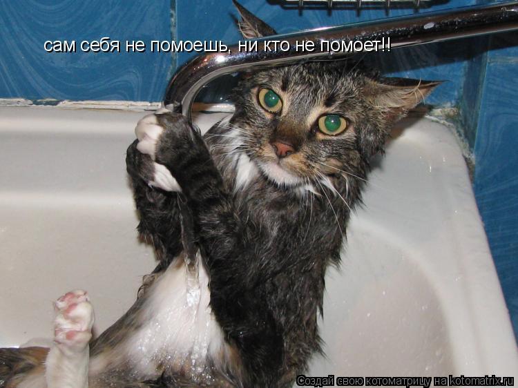 Котоматрица: сам себя не помоешь, ни кто не помоет!!
